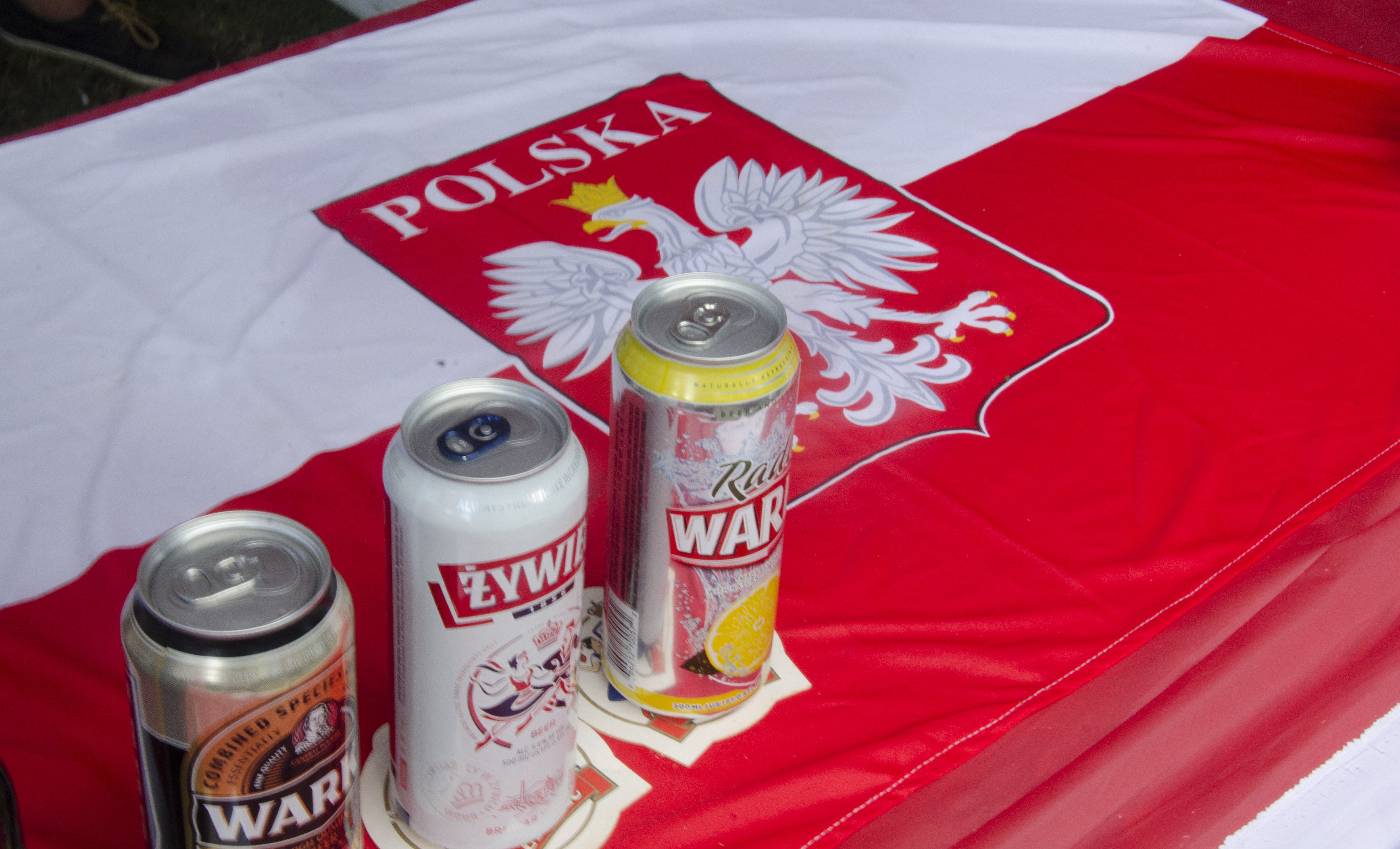 Polish Flag at International Cultural Festival