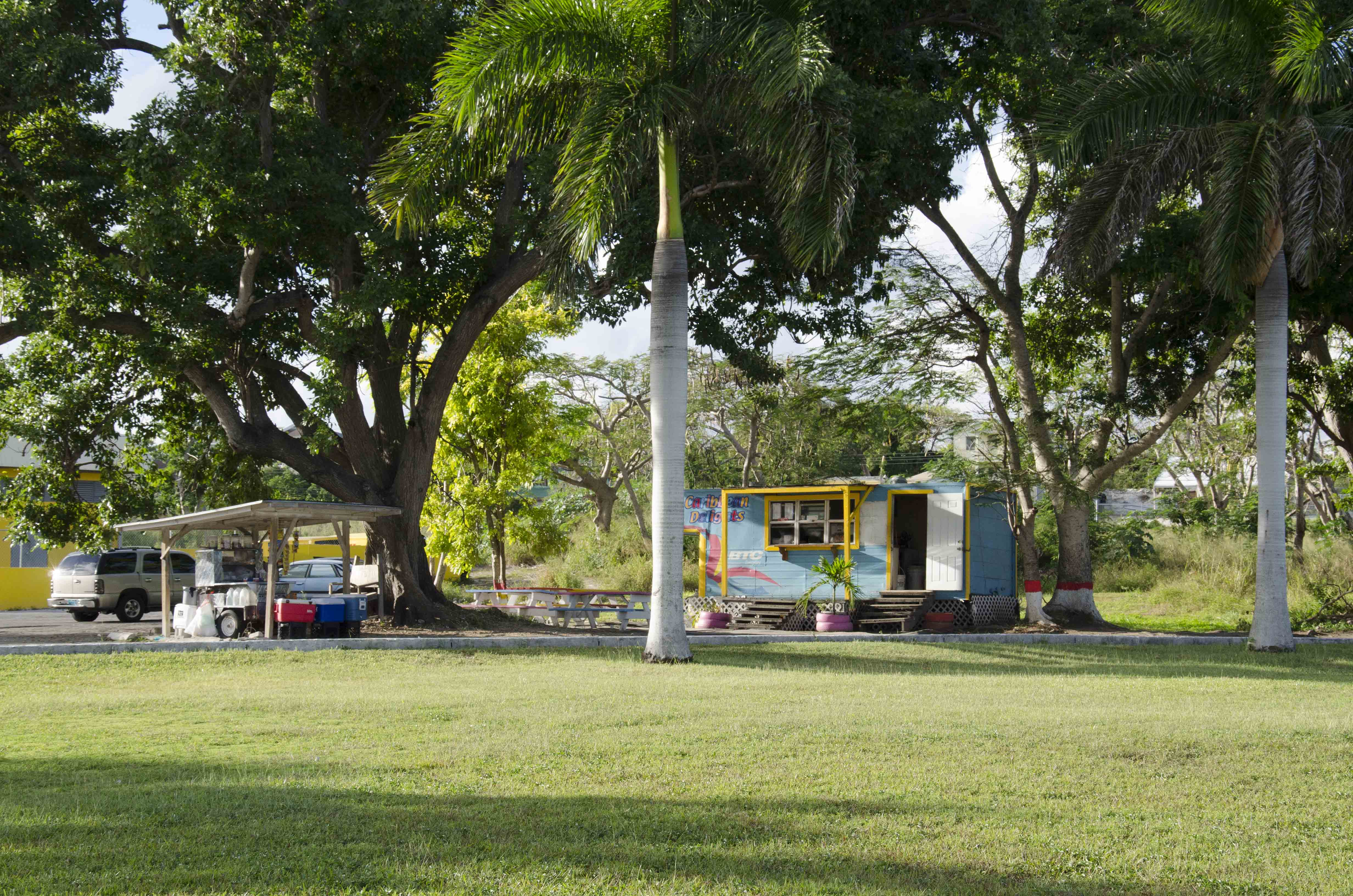 Lawn view of Thompson Blvd food stands